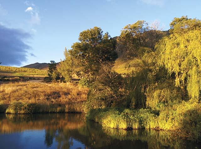 schalkenbosch_pond_vineyards