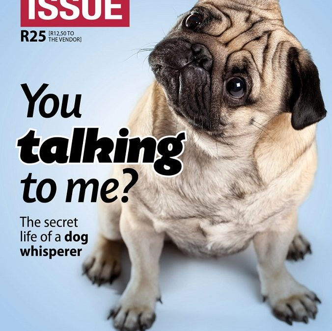 Introducing The Big Issue #243