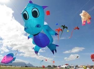 Cape Town International Kite Festival, Brenton Geach