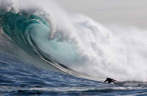 Oceans Alive – Tales of Sea Rescues
