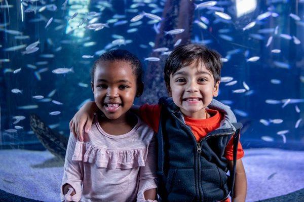 Two Oceans Aquarium, VA Waterfront