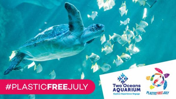 Plastic Free July, Two Oceans Aquarium