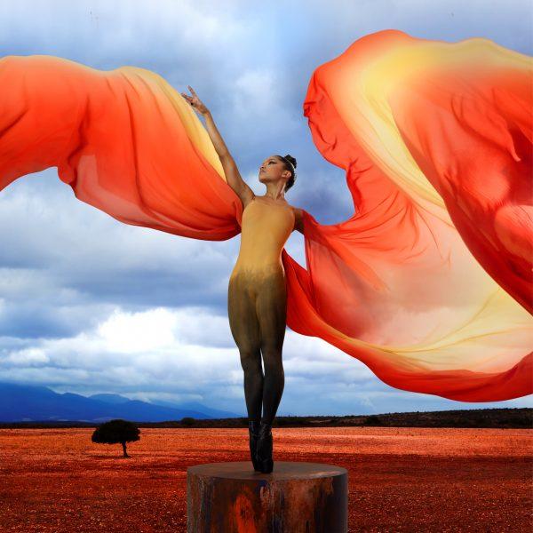 Satori, Cape town City Ballet