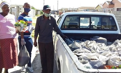 seedlings and bags of manure to township farmers