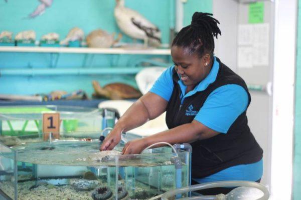 isiXhosa Course, Two Oceans Aquarium