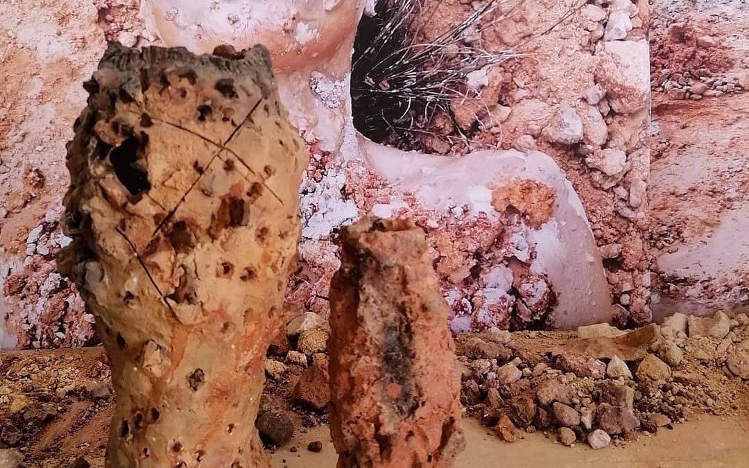 Mud Rites performance at Nel Art Gallery