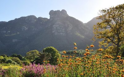 Kirstenbosch Dual Pricing From 1 April 2021