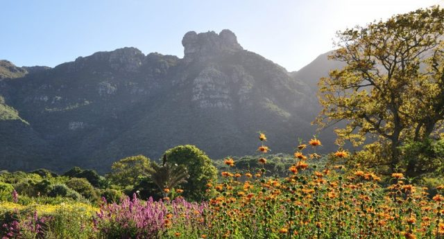 Kirstenbosch Dual Pricing