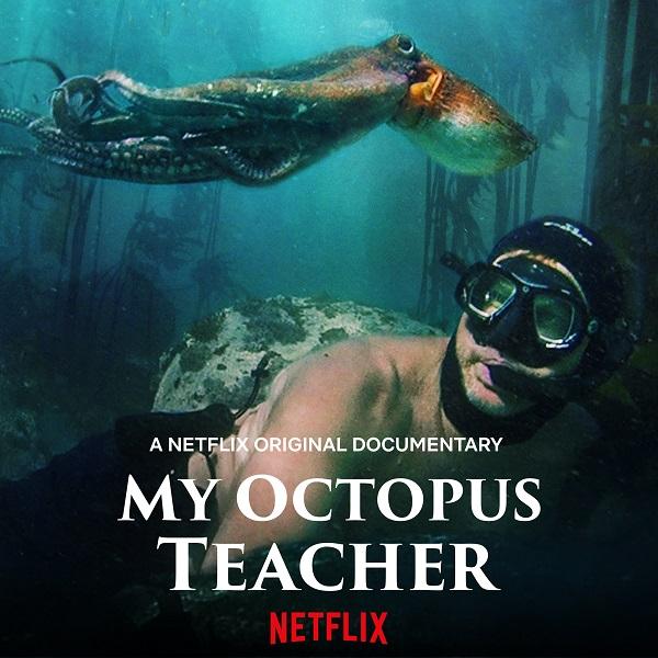 My Octopus Teacher by SA filmmaker, Craig Foster, wins BAFTA
