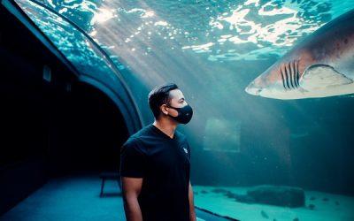 Celebrating Ocean Superheroes at Two Oceans Aquarium
