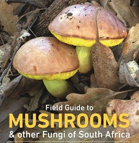 Field Guides to Mushrooms